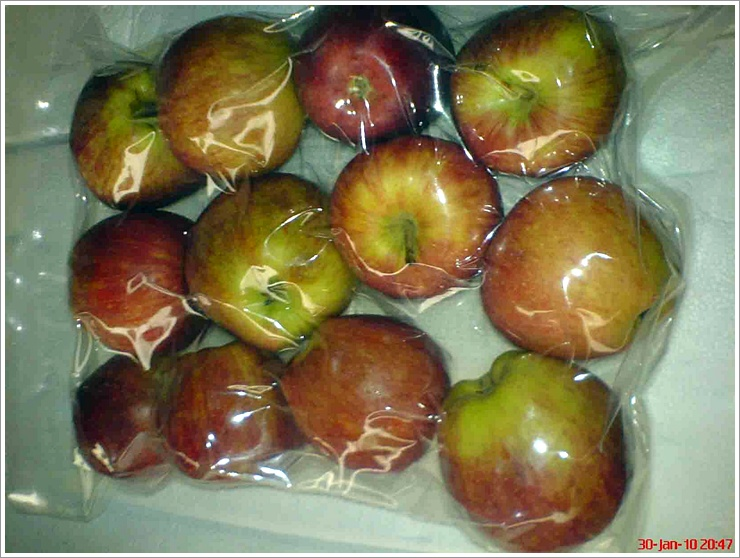 aa11e0ea_apple_vacuum_packing.jpg